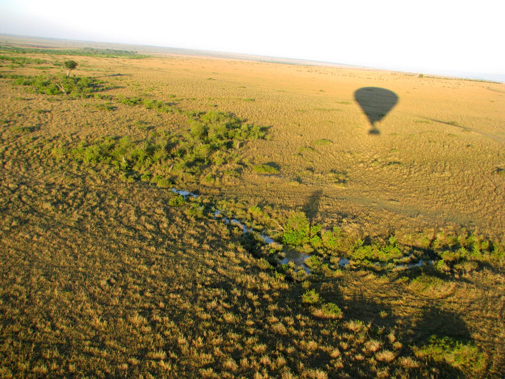 国境超えて、ケニア・タンザニア8日間 - ケニア発着のタンザニアサファリツアーです。ナイロビからタンザニア国境まで陸路約3時間。あの有名なセレンゲティ国立公園とンゴロンゴロクレーターへのサファリです。
