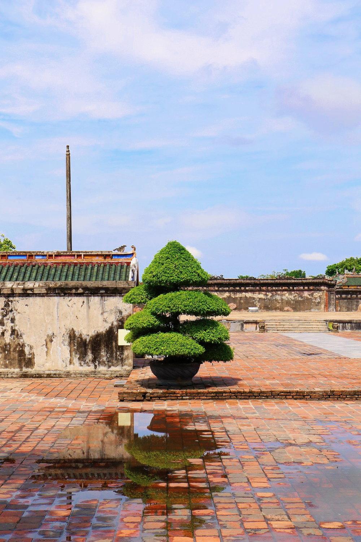 Hanoi - Vietnam ~