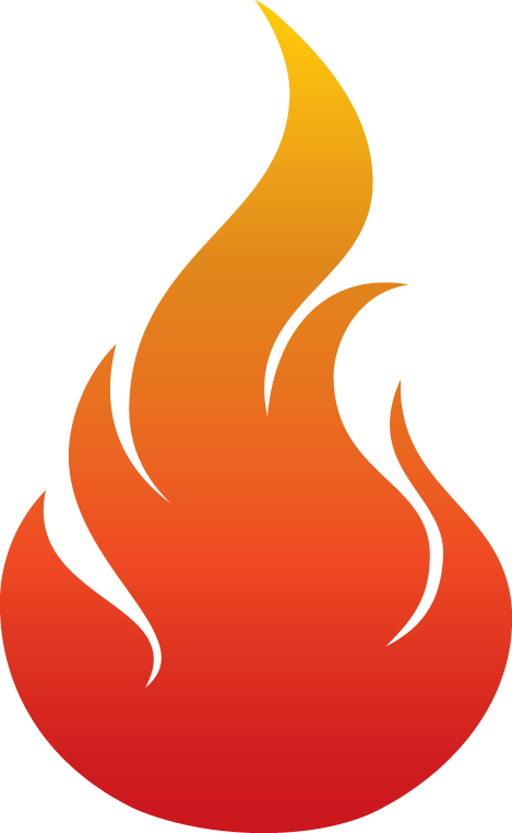 LFI_Flame_CMYK.png