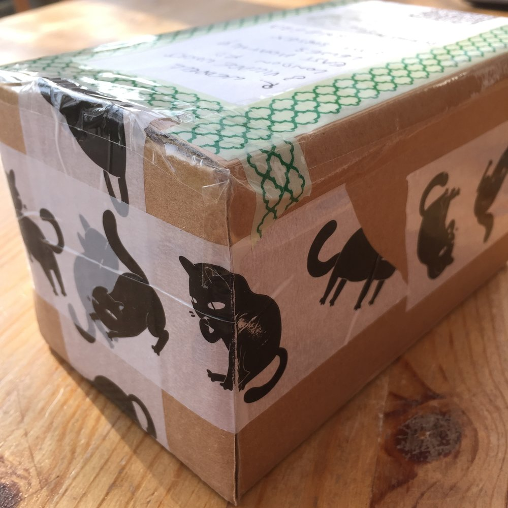 Ceinwyn's sticky-tape friends and relations were put to work decorating the box.