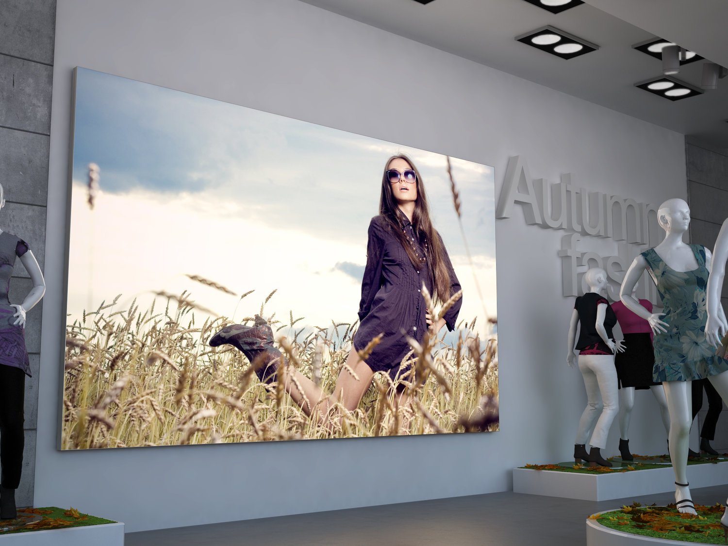 Tension Fabric Frames (TFS Displays) — The Marketing Works