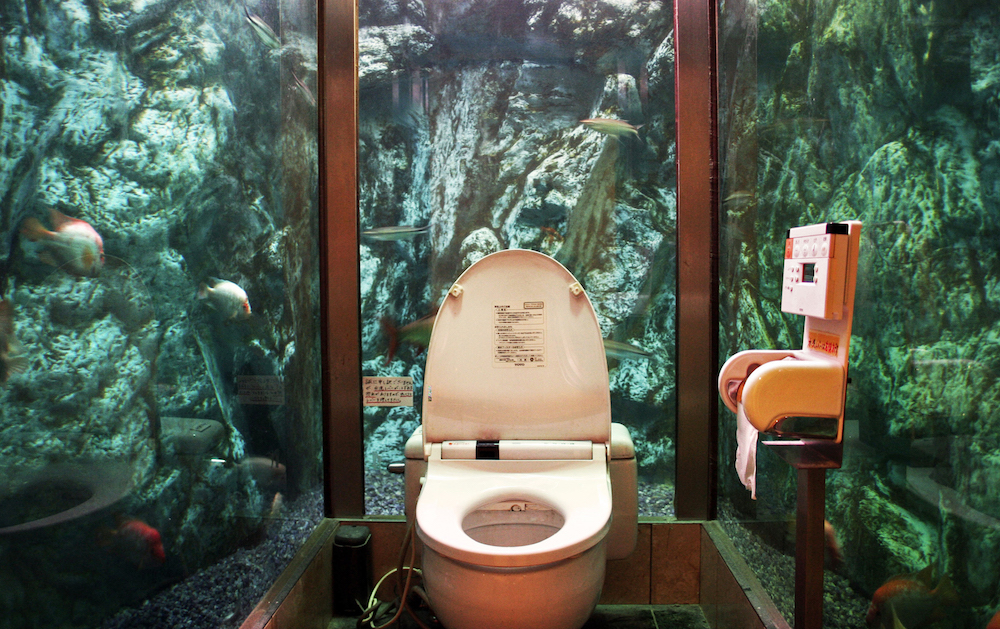 As seen in A Loo with a View, by Luke Barclay (Virgin Books). Image: Emerald Huang.