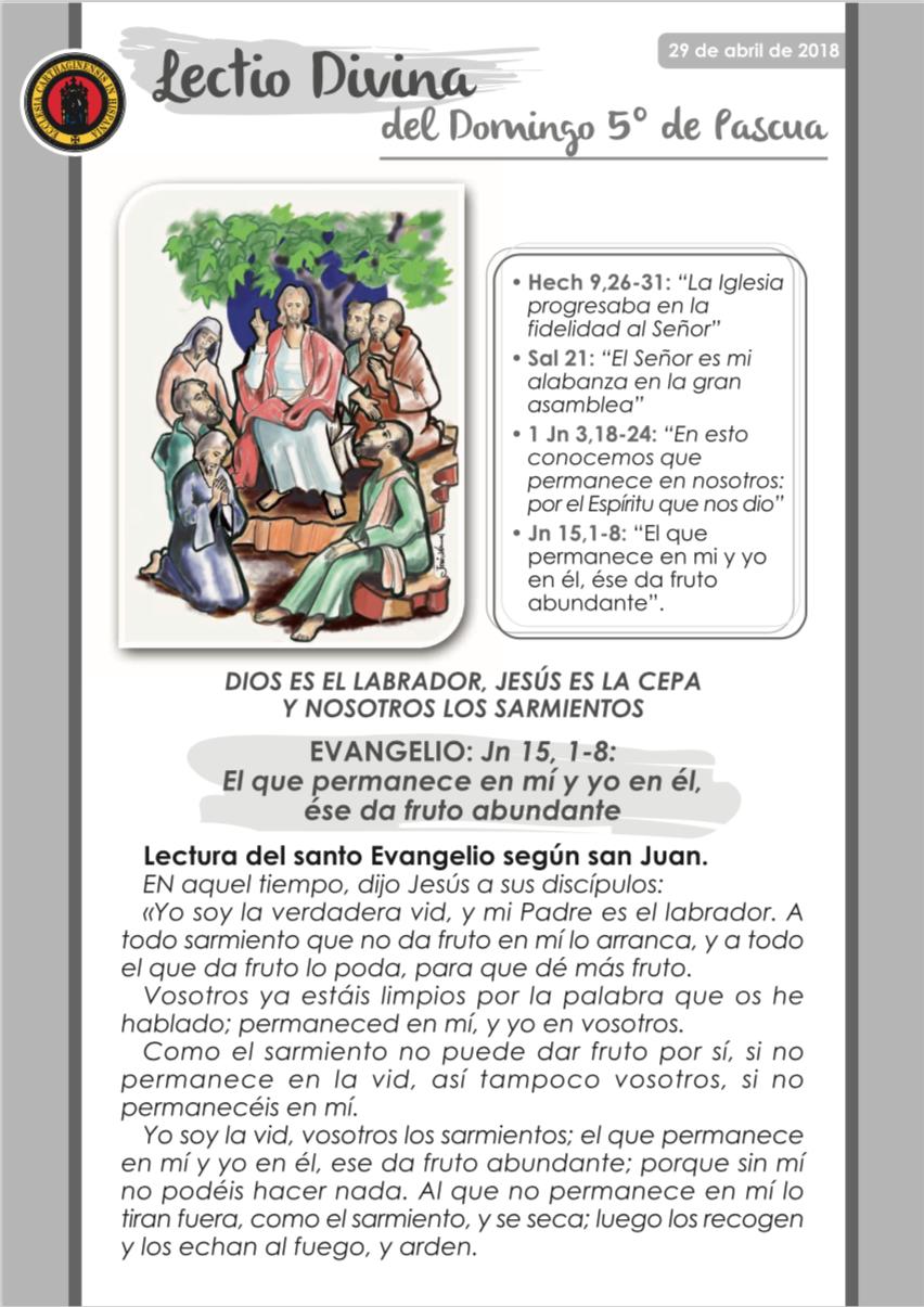 5º Domingo de Pascua