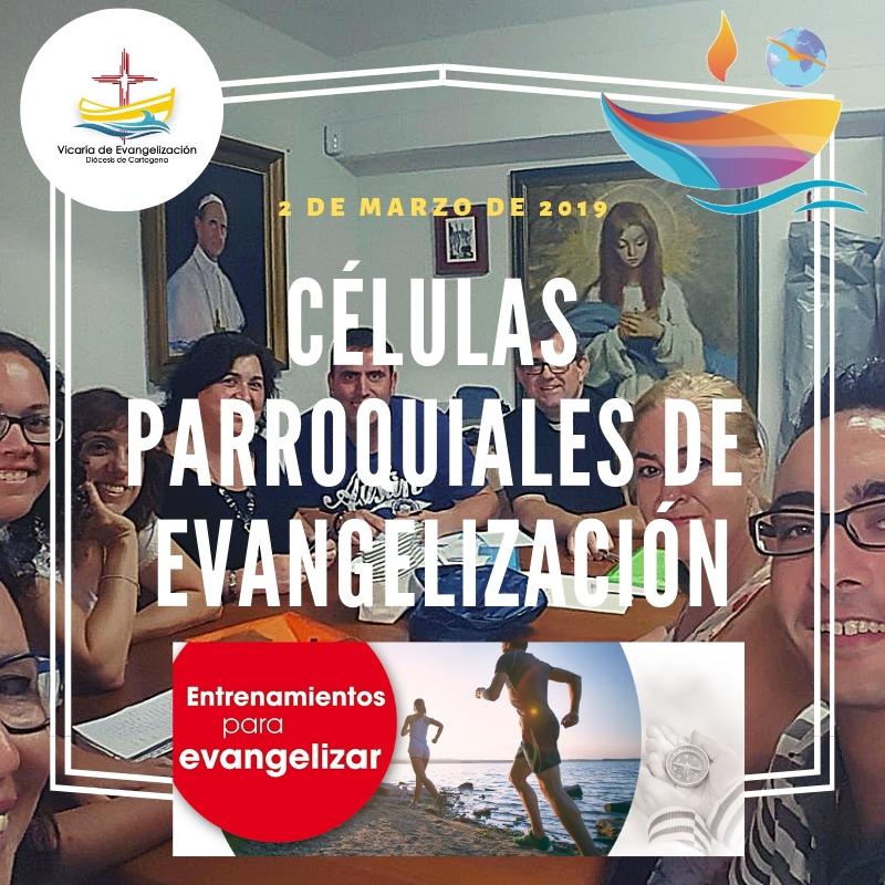 CÉLULAS PARROQUIALES DE EVANGELIZACIÓN copia.jpg