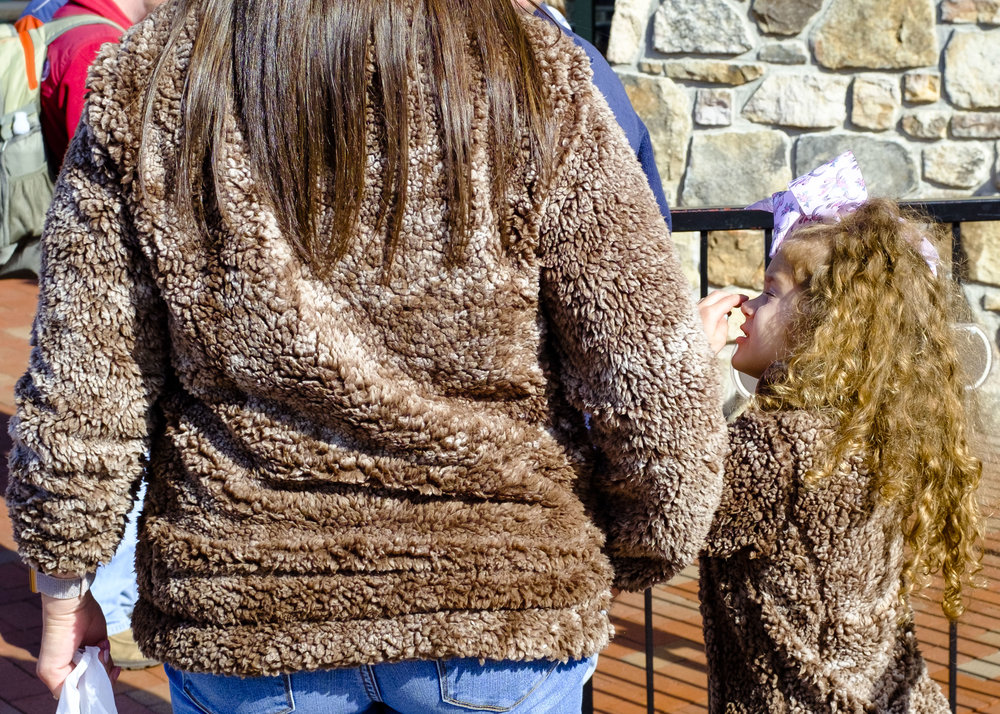 Furry Brown. Gatlinburg, TN 2018