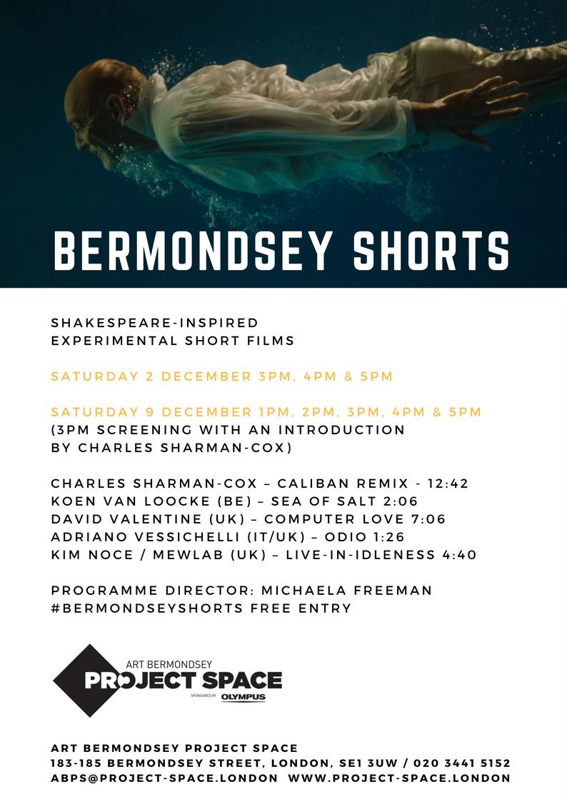 BERMONDSEY SHORTS.png