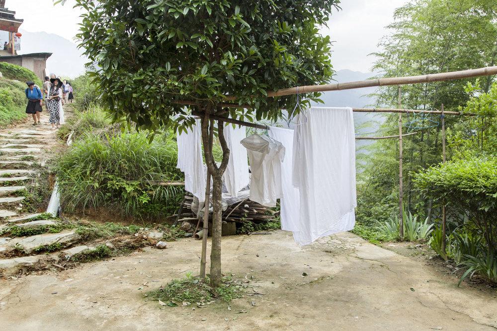Chinese Laundry 4058.jpg