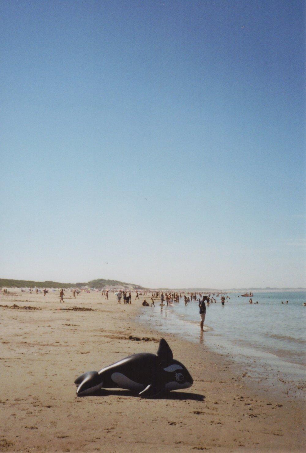 _beach_3.jpg