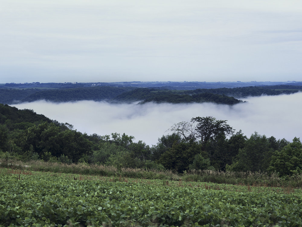Fog in the Valley.jpg