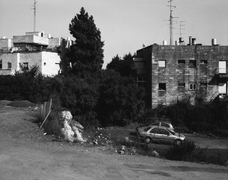 Yaniv Waissa_Herzl Blvd (2).jpg