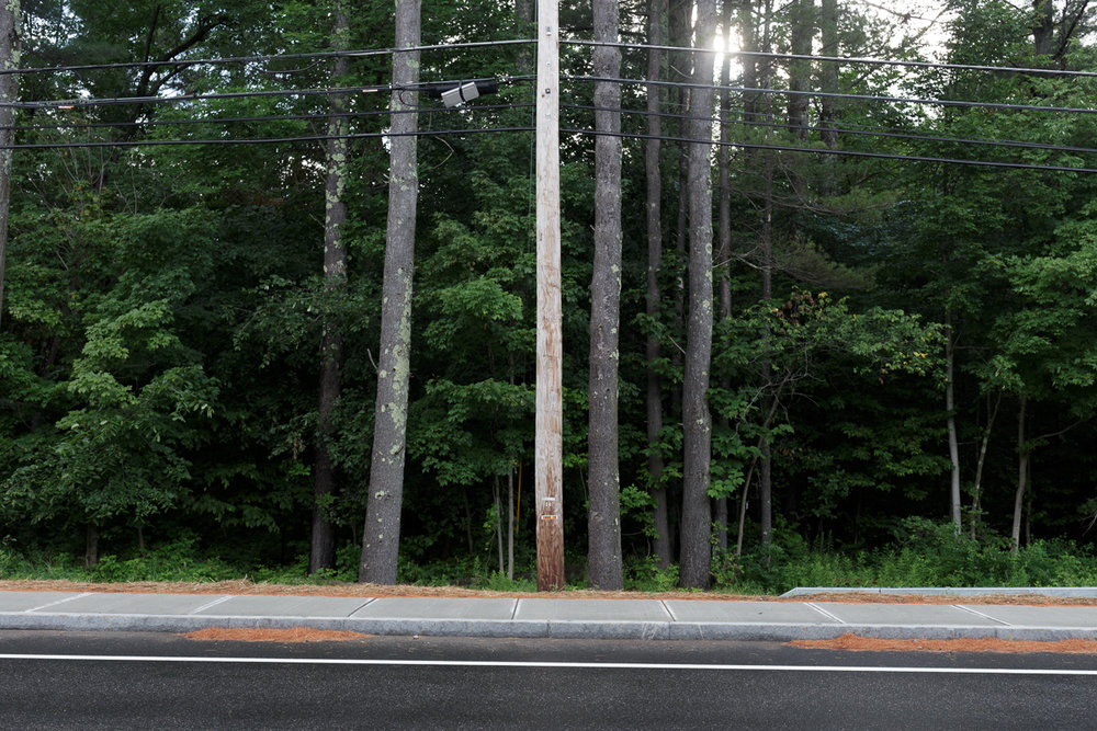 gaffney-20-orbiter-Utility_Pole_and_Trees.jpg