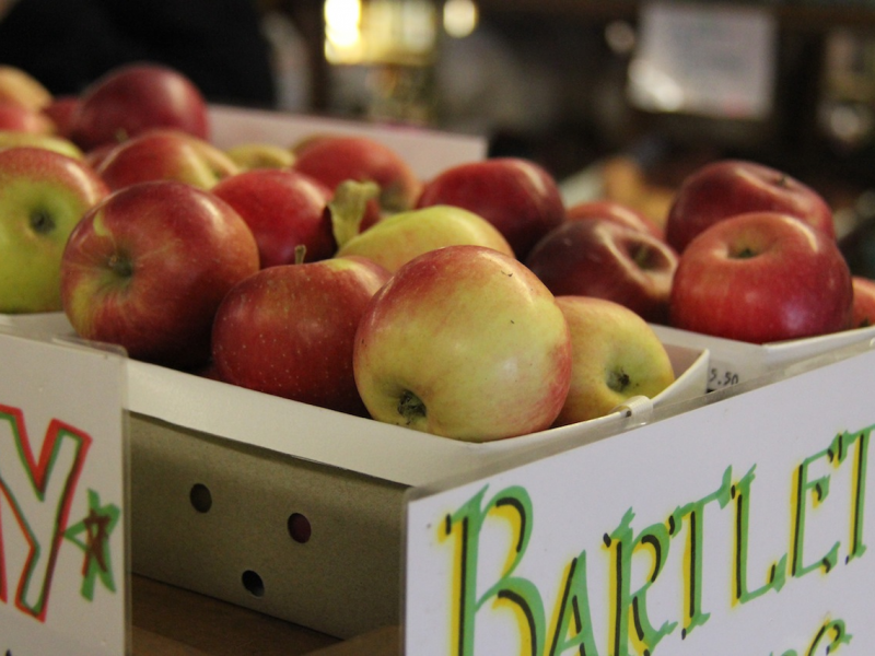 Michigan's best cider, apples, and donuts available throughout our district