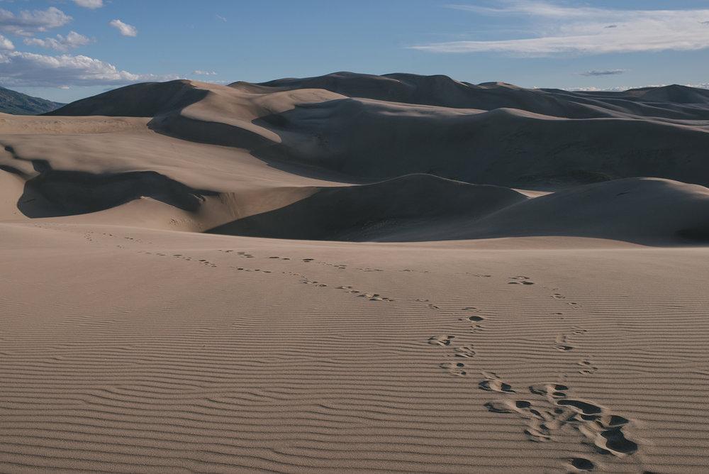 Sanddunes-13.jpg