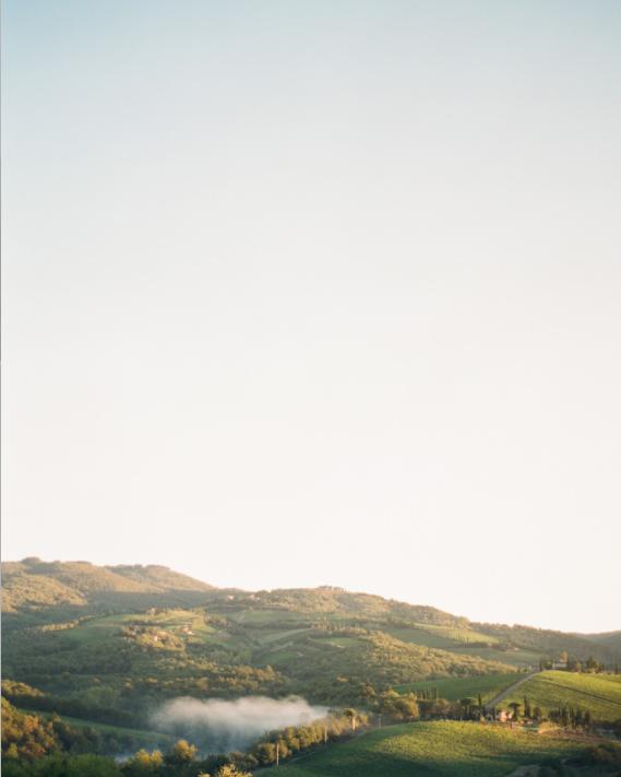d + M - tuscany, italy