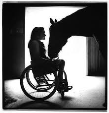 horse with wheelchair girl.jpg