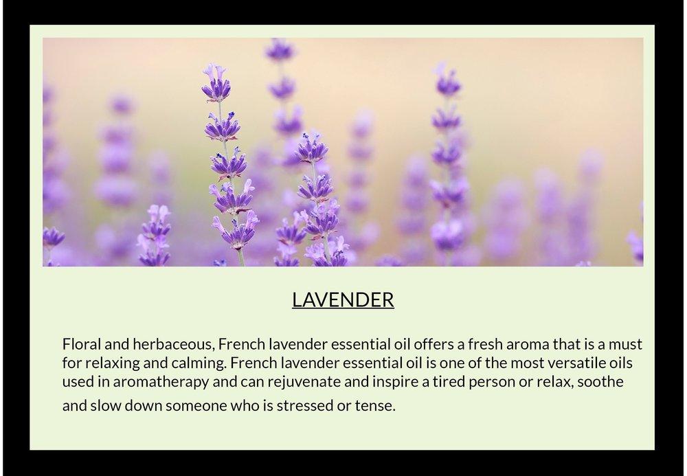 lavendar with text.jpg