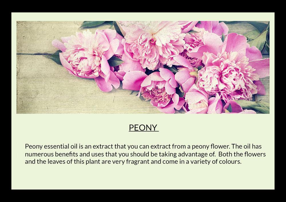 peony with text.jpg