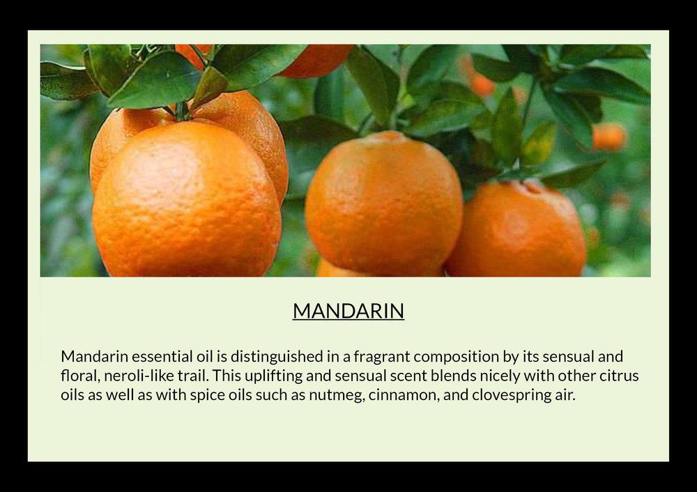 mandarin with text.jpg