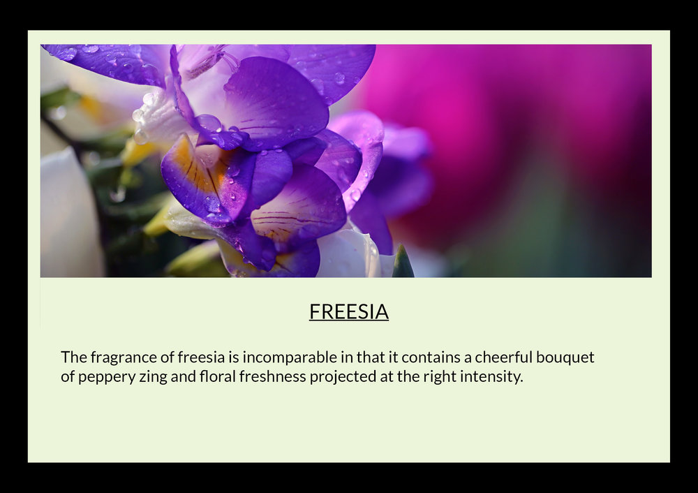 Freesia with text.jpg