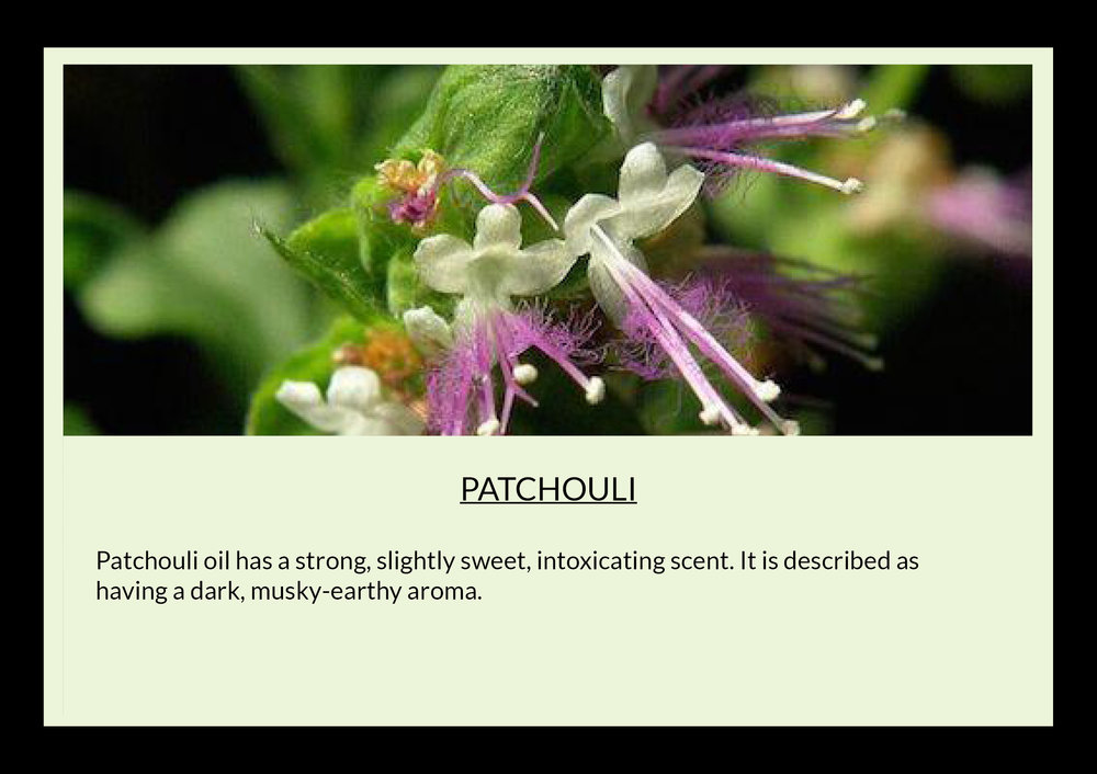 patchouli with text.jpg