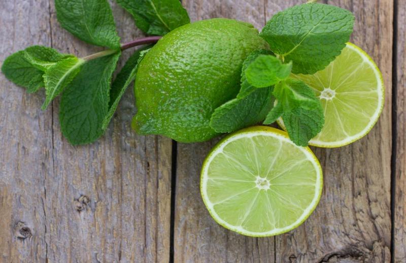 Lime Basil image (2).jpg