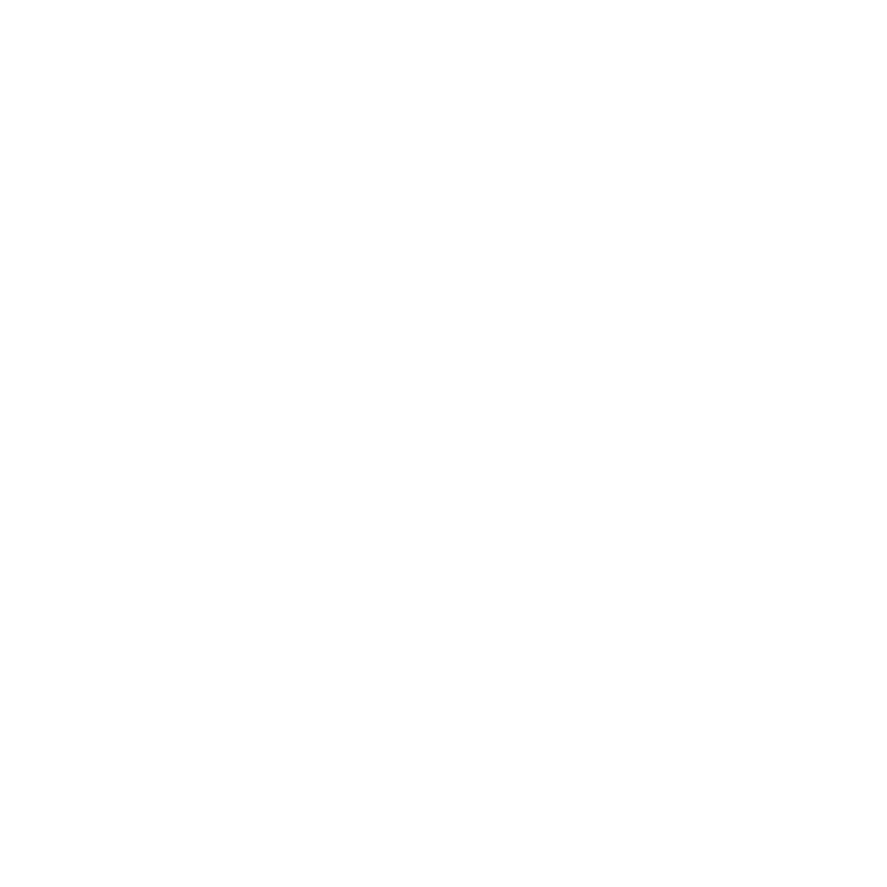 The Summer Camp Society