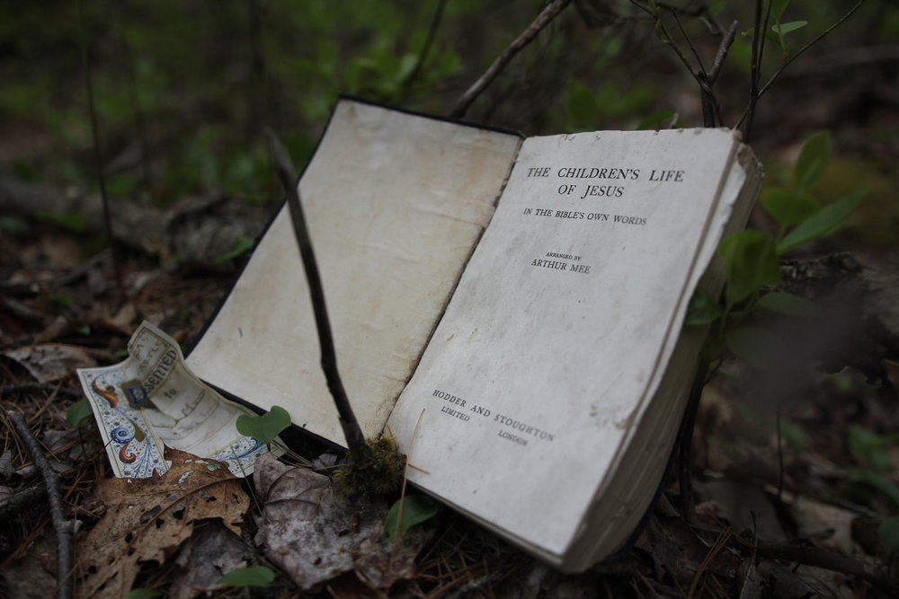 decomposing: The Children's Life of Jesus  / found book / installation 2016 / image 2016