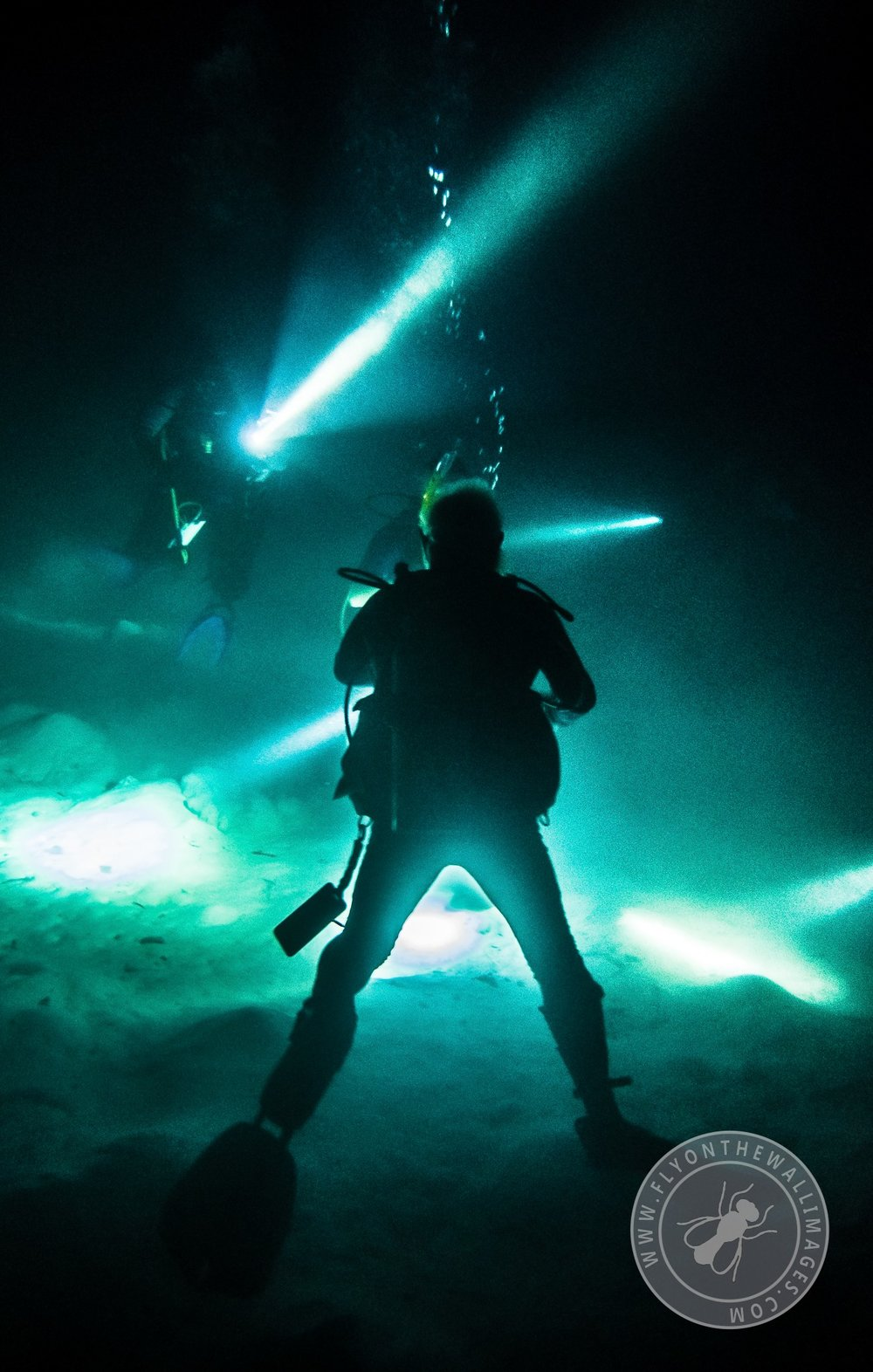 Night Dive at Coral Gardens
