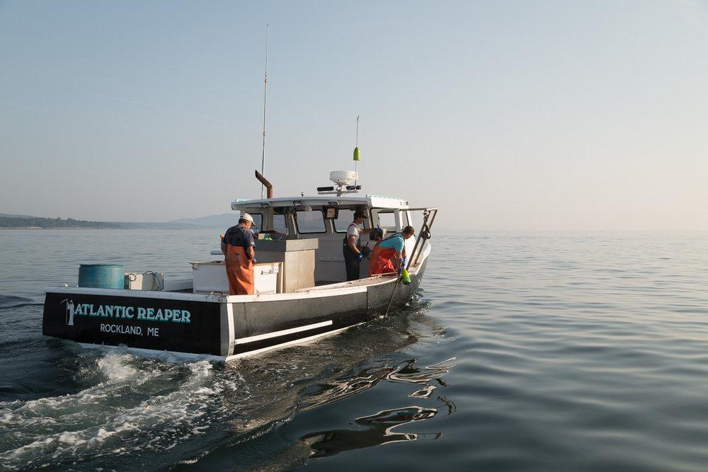 lobster-boat-maine-penobscot-bay.jpg