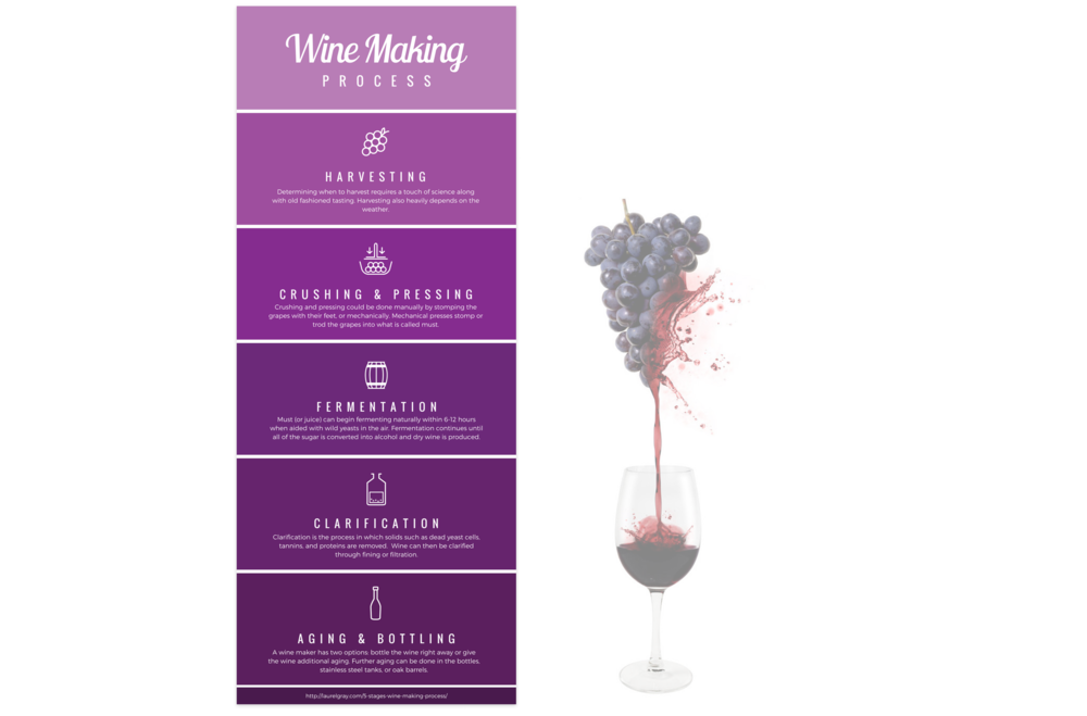 wine-making-process-2.png
