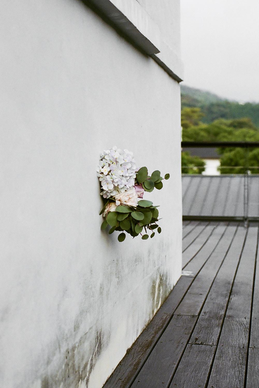 wallflower-lres.png