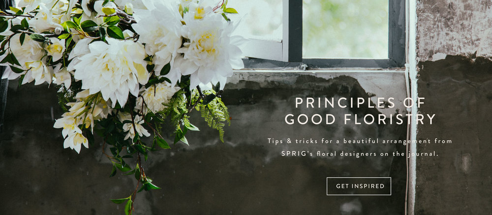 SPRIG-J-Principles.jpg
