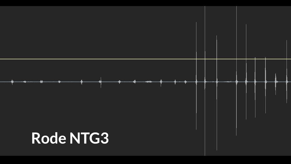 NTG3.jpg