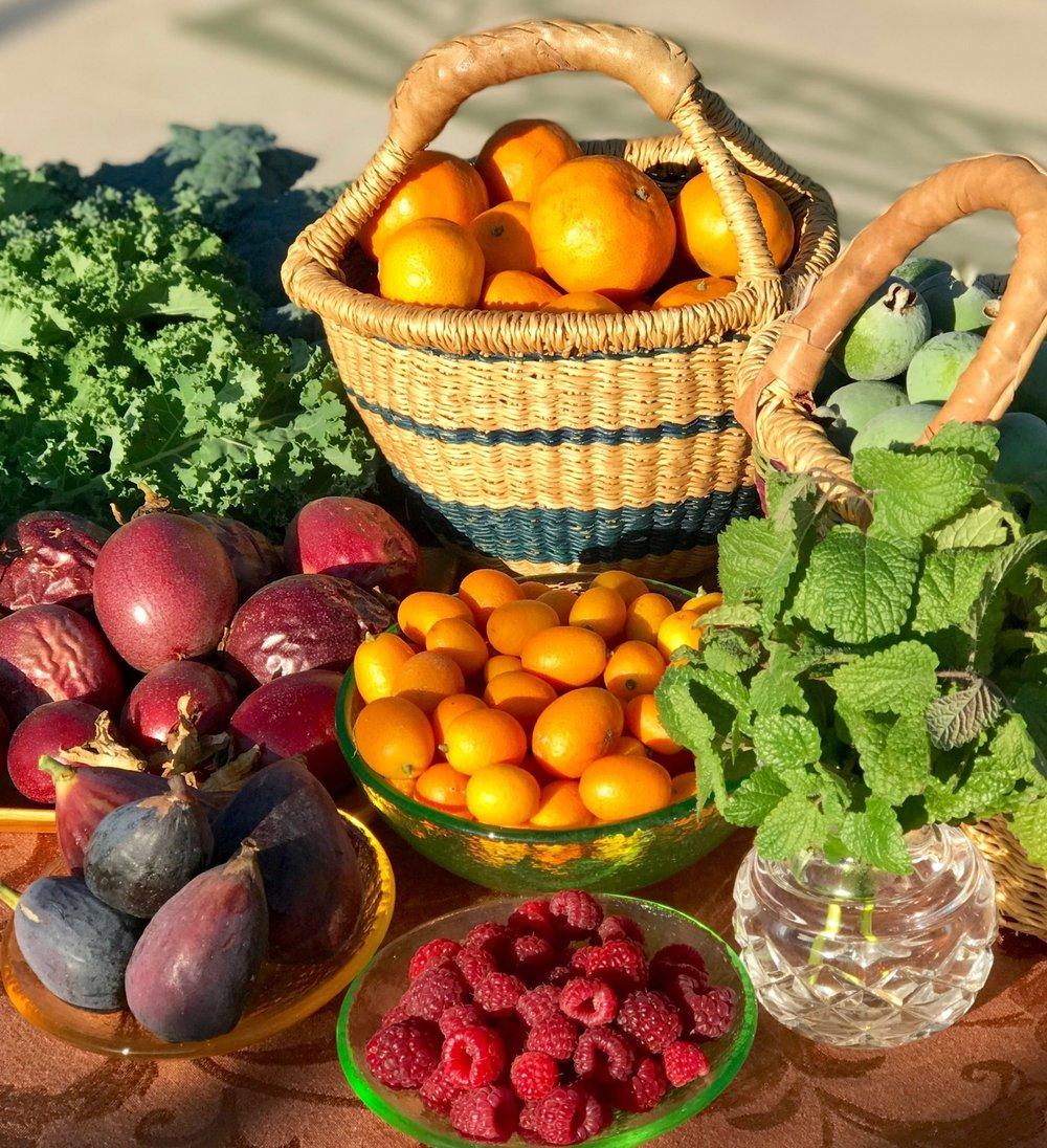 Nutrition 2.jpg