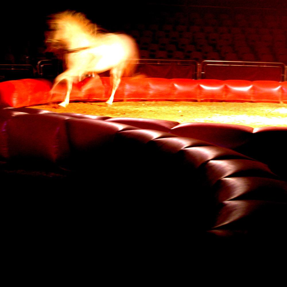 circo_expo_01.jpg