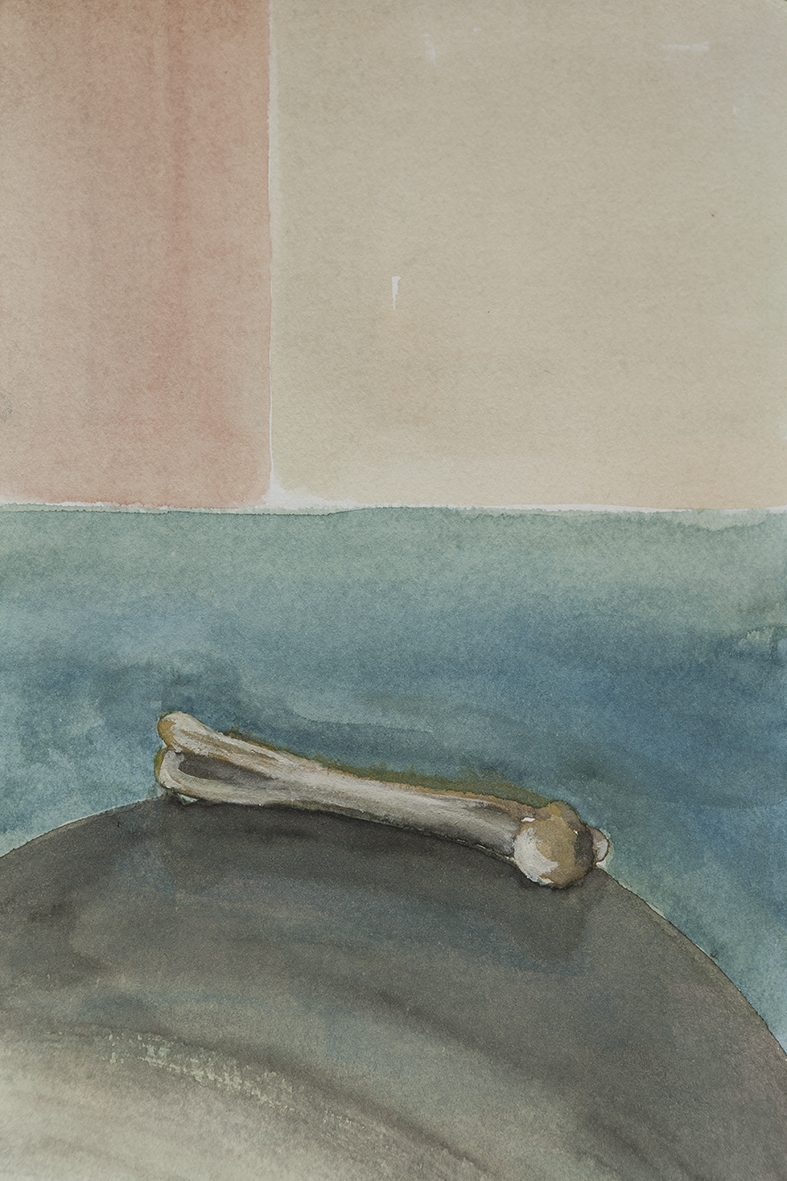 bone, 2014 | watercolours on paper, 27x17,5 cm
