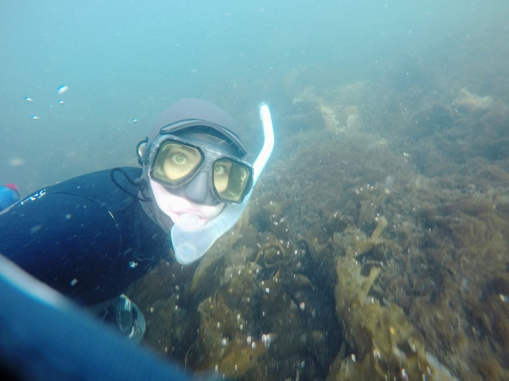 Tamsen Peeples, snorkeling for fertile kelp