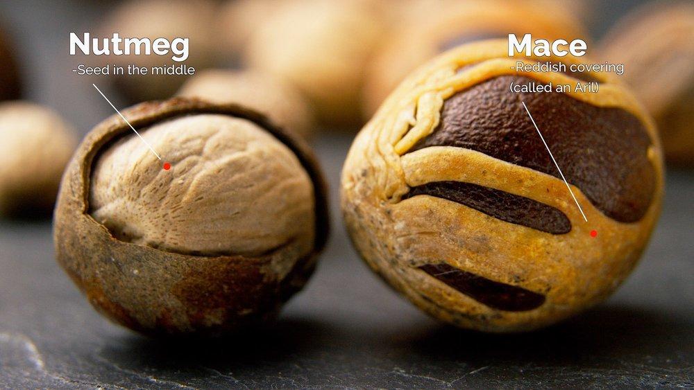 Nutmeg and Mace C 2000.jpeg