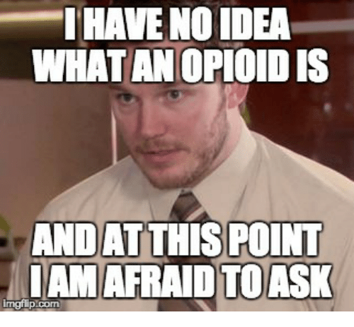 no idea what an opioid is