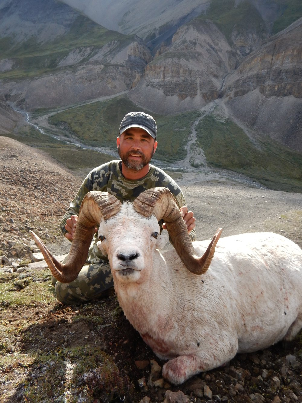 Tom Fischer's giant 2017 ram. Guide Ben Stourac.jpg