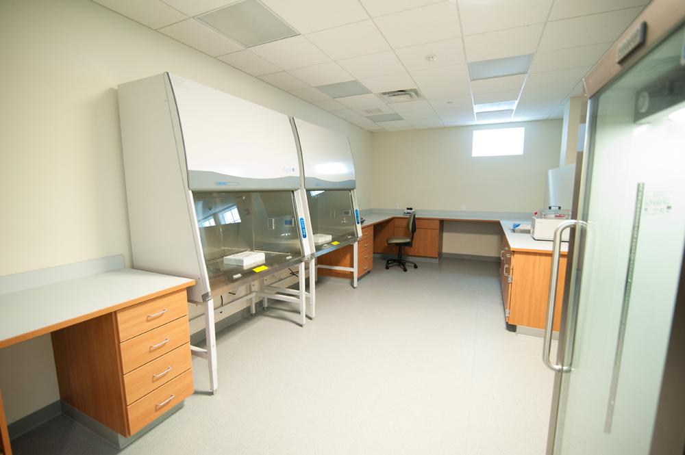 Medical Laboratory 1.jpg