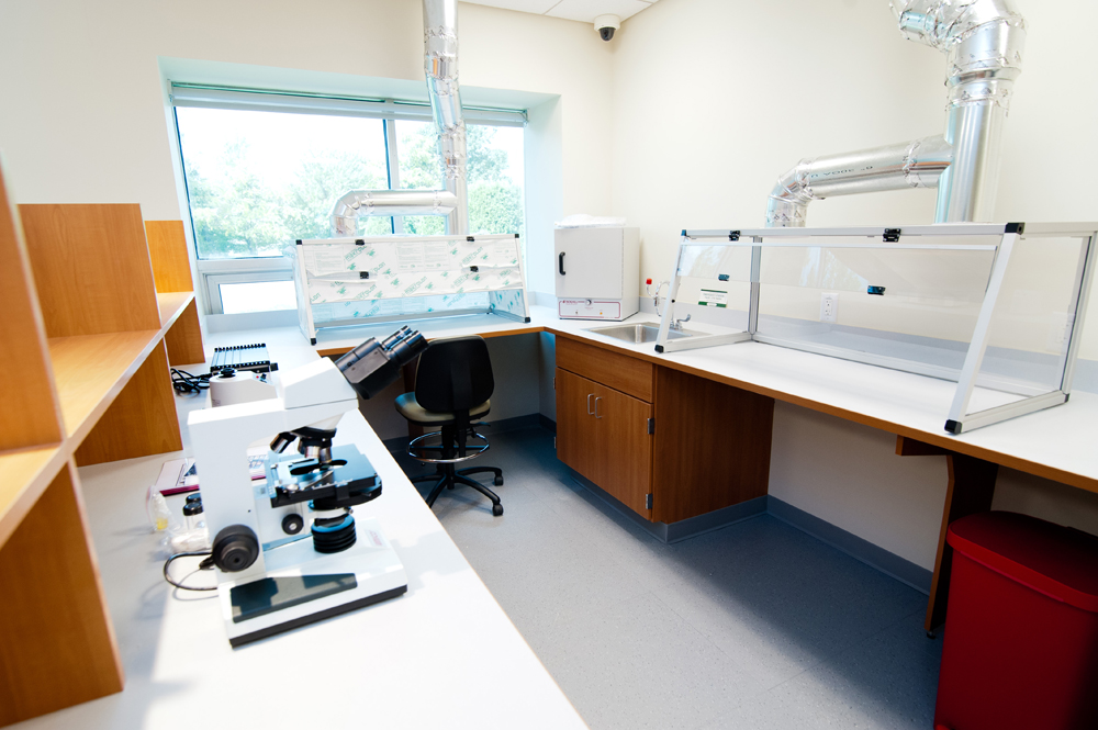 Medical Laboratory 2.jpg