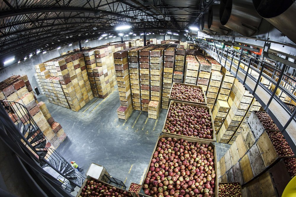 Apple Bins Stacked Inside CA storage4.jpg