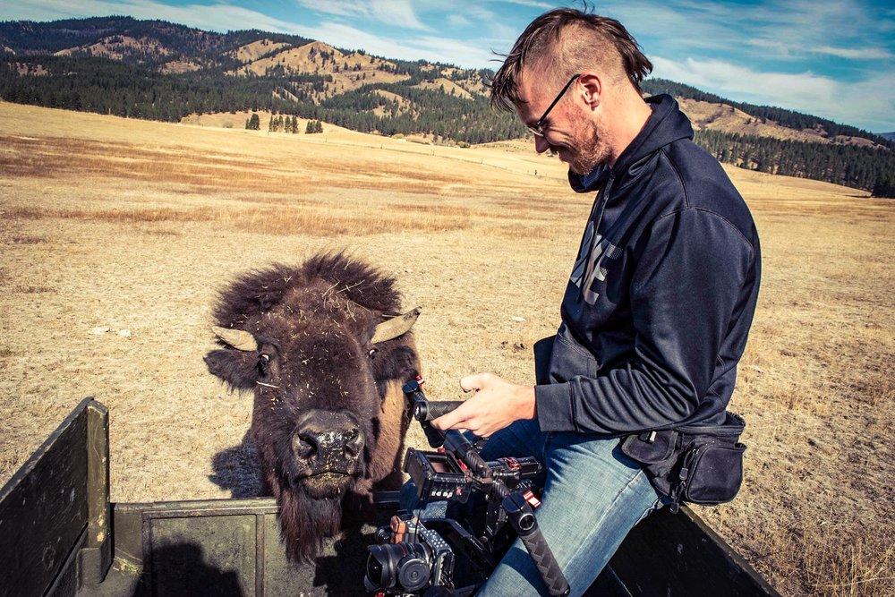 Ellensburg Kittitas Buffalo Bison