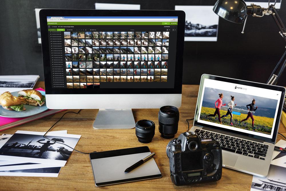 PLP Homepage.jpg