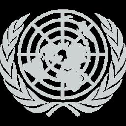 UN Gray.png