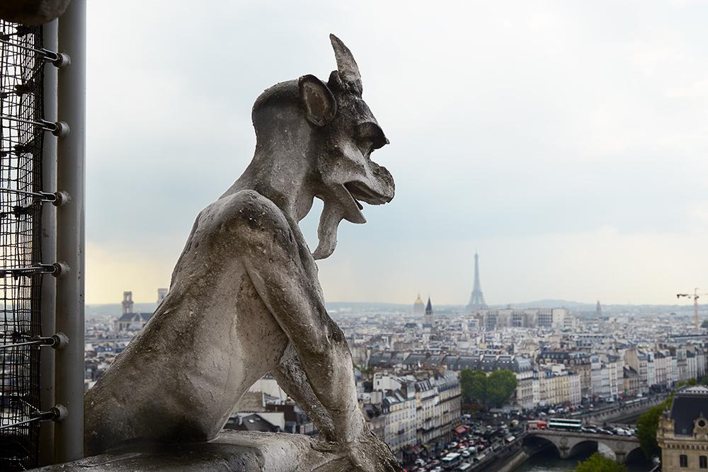 Gargoyle Overlooking Paris
