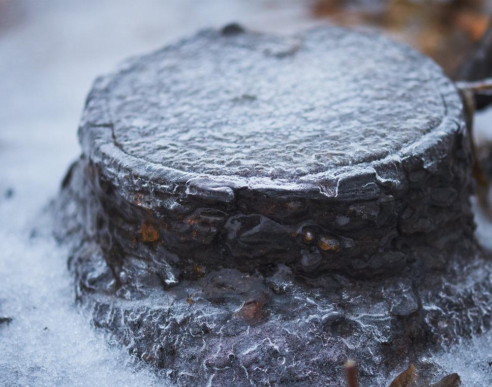 Ice Covered Stump
