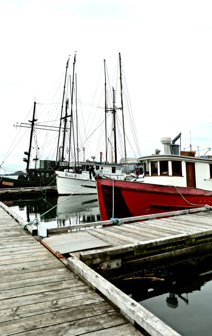 Fishing Boats – Prince Rupert, BC