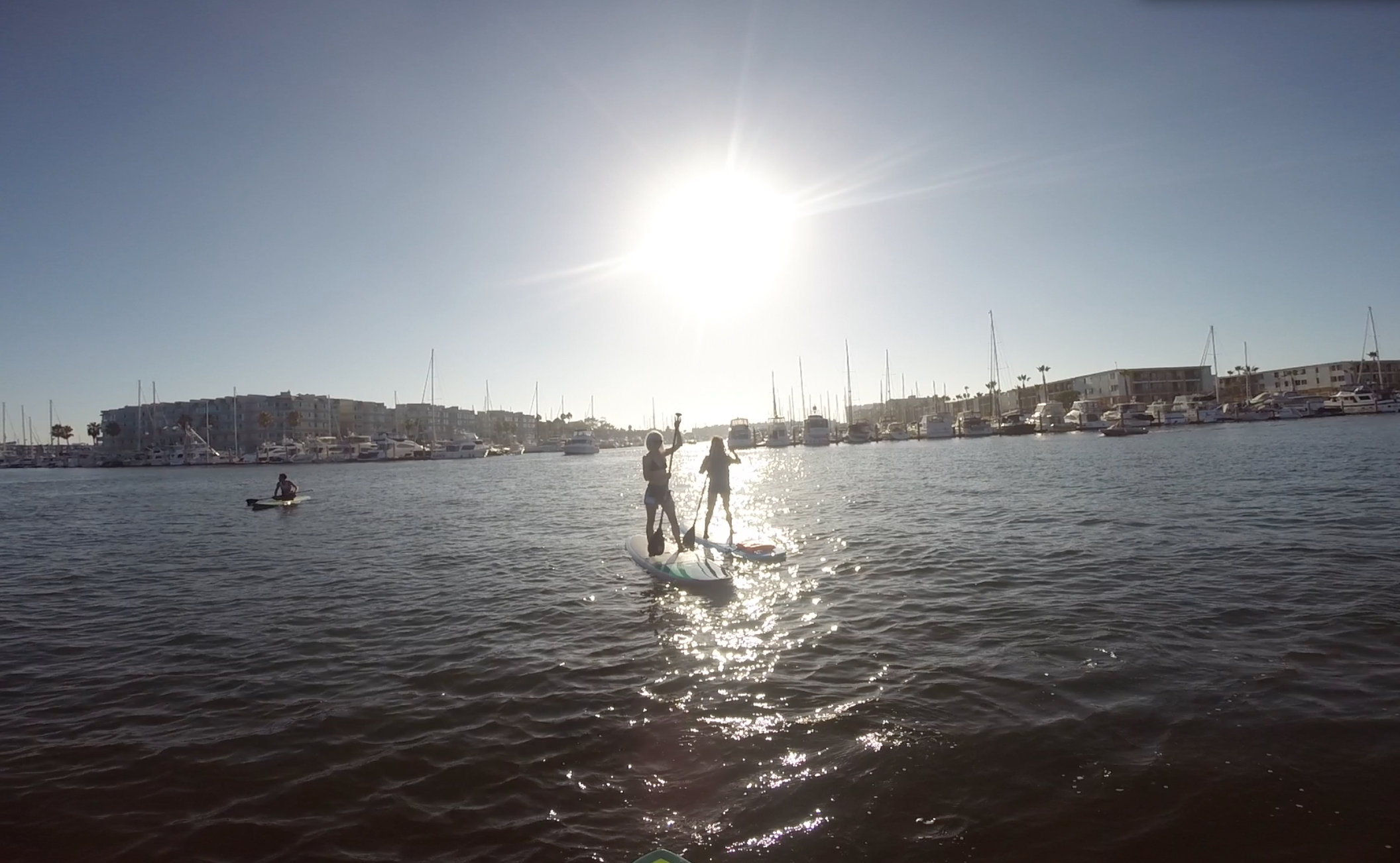 Paddleboarding silhouettes